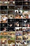 Sex Friends Safari   Секс с Друзьями На Сафари (2020) HD 720p