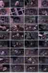 Calico, Sister Dee - Ice Pony II (2020) HD 720p